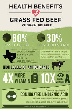 Why Is Grass Fed Beef Healthier For You