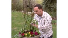 Video: How To Plant A Container Vegetable Garden