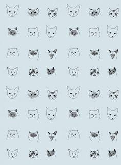 #behang #katten   d'Eliza Fricker via thecollection.fr