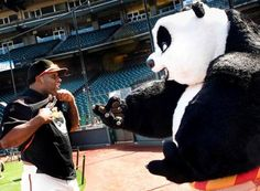 Pablo sandoval and the panda