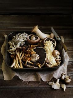 Mushrooms / William Meppem for Gourmet Traveller - champignon Food Styling, Food Photography Styling, Fruit And Veg, Fruits And Veggies, Fresh Fruit, Shiitake, Think Food, Kitchenaid, Kraut