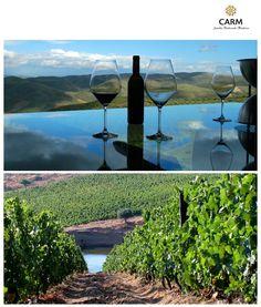 Douro Portugal, Douro Valley, Port Wine, Spain And Portugal, Teas, Portuguese, Journey, Culture, World