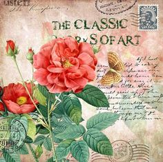 Dark peach rose postcard with stamp: