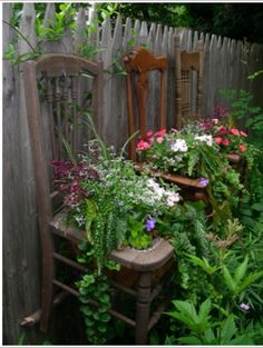 hang broken/old chairs to use as planter holders