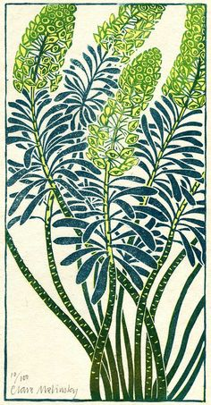 Euphorbia. Edition of 100 | Clare Melinsky's lino-cuts in colour and black and white follow the style of traditional woodcuts