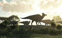"""Corythosaurus herd. The genus of hadrosaurid """"duck-billed"""" dinosaur is from the Upper Cretaceous Period, in what is now North America. Its name means """"helmet lizard"""","""