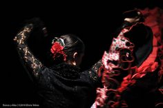 #Flamenco #dancer with her bata de cola.