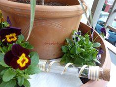 #ΓΑΜΟΣ ⁞ Προσκλητήριο εκτυπωμένο σε ριζόχαρτο, συνοδευόμενο από γυάλινο σωλήνα και κορδόνι ποντικοουρά! Planter Pots, Invitations, Save The Date Invitations, Invitation