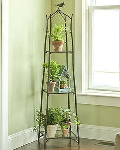 Incredible Tiered Plant Stand Design Bring Freshness for Home Interior: Glass Window Design Ideas Combine With Iron Tiered Plant Stand And Wooden Flooring Plus White Wall Paint For Home Interior Decoration Potted Plants, Indoor Plants, Indoor Garden, Home And Garden, Plantas Indoor, Decoration Bedroom, Plant Shelves, Small Space Gardening, Garden Supplies