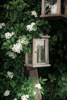 © bysahlia.com Gmunden Austria, Outdoor Structures, Garden, Plants, Graphics, Garten, Lawn And Garden, Gardens, Plant