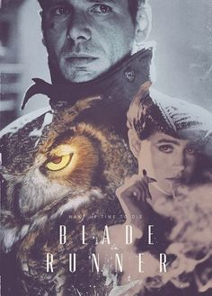 Blade Runner Poster: Harrison Ford and Sean Young Love Movie, Movie Tv, Badass Movie, Blade Runner Poster, Film Science Fiction, Fiction Film, Harrison Ford, Photocollage, Ex Machina