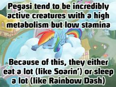 That is it.  I am a pegasus (or rather a bat pony because I prefer the night)