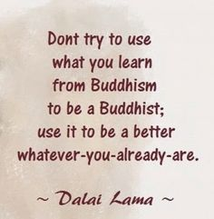 """""""Don't try to use what you learn from Buddhism to be a Buddhist; use it to be a better whatever-you-already-are."""" Dalai Lama"""