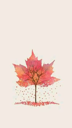 Autumn leaves / tree