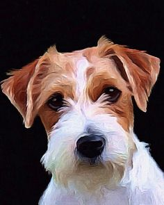 Jack Russell Terrier art painting acrylic giclee print canvas print custom pet portrait wall decor rough coat parson terrier gift idea dog  by AnimalArtIncognito on Etsy