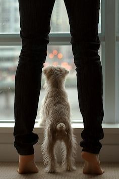 I think I see the car. Right? Is he almost home? Are we going to wait here til he gets here? How long have we been here........