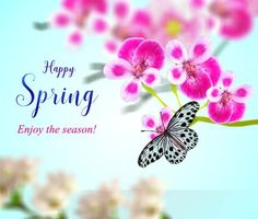 A lovely animated card for the magical spring season with its colorful natural changes around us! Free online Magical Season Of Nature ecards on Spring 1st Day Of Spring, Happy Spring, Spring Time, New Month Greetings, Springtime Quotes, Hello Spring Wallpaper, Baby Girl Clipart, Spring Quotes, Online Greeting Cards
