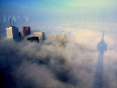 Stunning shot of the Toronto skyline and buildings tall enough to peek out from morning fog. CN tower shadow. Love this!