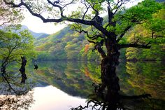 주왕산 - 주산지 (Mt. Juwangsan, Korea)