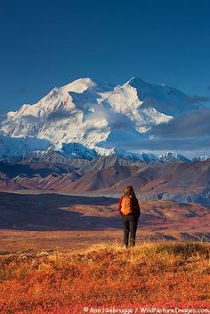 Denali National Park, Alaska.I want to go see this place one day.: