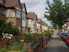 West Acton was recently voted the nicest area in London, as voted by the public. http://www.ealingremovals.org/2013/05/removals-acton-london-removal-company-acton/