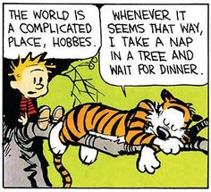 Sleep seems to solve most of life's issues.