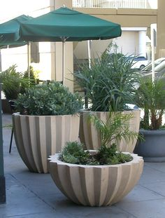 Bildresultat För How To Make Large Cement Planters