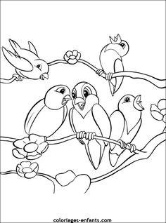 coloriage d'oiseaux - dessin à colorier d'animaux
