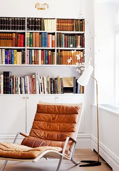 Leather chair and bookcase