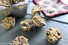 Chicken Wild Rice Dog Treat Recipe Photo