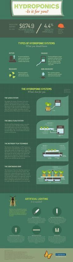 Hydroponics Infograp     Hydroponics Infographic - types of hydroponics systems and more information