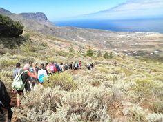 CAMINATAS EN GRAN CANARIA Canario, Mountains, Nature, Travel, Trekking, Parks, Drawings, Naturaleza, Viajes