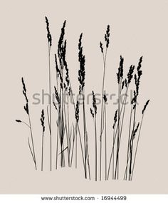 Find Vector Drawing Floral Background Grass stock images in HD and millions of other royalty-free stock photos, illustrations and vectors in the Shutterstock collection. Grass Drawing, Plant Drawing, Botanical Line Drawing, Floral Drawing, Silhouette Images, Landscape Silhouette, Tattoo Line, Stencil Templates, Stencils