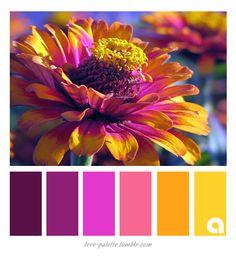 Color Schemes Colour Palettes, Colour Pallette, Color Palate, Color Combos, Summer Color Palettes, Beautiful Color Combinations, Color Blending, Color Mixing, Palette Design