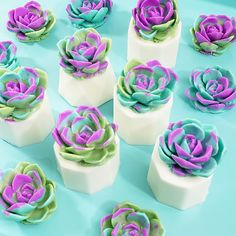 Varigated Succulent Soap : Handmade soap in succulent form! We are head over heels in love with Use these bar soaps to decorate, scent your home and clean your skin. Soap Cake, Cupcake Soap, Handmade Soap Recipes, Body Craft, Decorative Soaps, Glycerin Soap, Soap Packaging, Homemade Beauty Products, Cold Process Soap