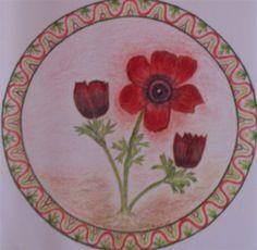 flowers from Israël