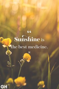 """From funny spring quotes to uplifting spring quotes, these happy quotes will have you saying """"hello, spring! Friday Quotes Humor, Sunday Quotes Funny, Funny Quotes, Quotes Thoughts, Words Quotes, Life Quotes, Quotes Quotes, Career Quotes, Success Quotes"""