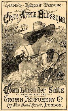 1890's English perfume advertisement:    http://lilac-n-lavender.blogspot.com/2012/02/english-perfume-spring-gift-tags.html
