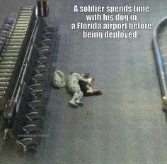 A solidão atenuada com um animal de estimação