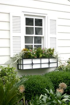 love these flower boxes