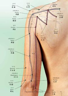 Acupressure More Effective Than Physical Therapy - Acupuncture Hut Acupuncture Benefits, Acupuncture Points, Massage Benefits, Acupressure Points, Acupressure Treatment, Reflexology Massage, Massage Techniques, Traditional Chinese Medicine, Qigong