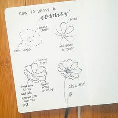 Happy #FlowerFriday everyone! Thanks for your patience lately while I've been traveling for work  Here is a step by step on how to draw a lovely summer cosmos flower. I'd love to see some color on these, guys! Tag me or use #bonjournal  so i can check yours out  . . .  Head over to @inkbyjeng to see her lovely tutorial! I'm so happy she's doing tutorials with me, she is awesome! . . . #bujocommunity #bulletjournallove #bujojunkies #bulletjournal #bujo #bulletjournalcommunity #bulletjourna...