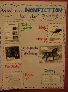 Nonfiction writing lesson ideas in kindergarten. Anchor charts for informational texts and model writing for writers workshop. Fiction Anchor Chart, Ela Anchor Charts, Kindergarten Anchor Charts, Reading Anchor Charts, Kindergarten Writing, Teaching Reading, Teaching Ideas, Informative Writing Kindergarten, Student Teaching