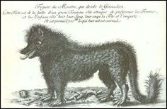 One of several renderings of the beast of Gevaudan. Probably more than one creature causing mass hysteria in southern France in the late 1700's.