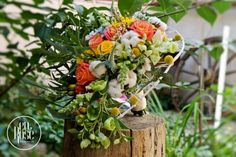 Structural design inspired by nature's perfect equilibrium. Bridal Bouquet Coral, Live Coral, Summer Wedding, Bride, Inspired, Plants, Pink, Color, Design