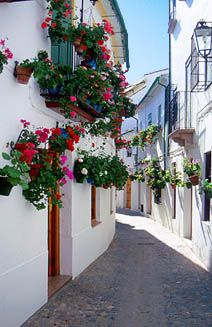 Rustic Blue Holiday Guide to Andalucia, Spain | Priego de Cordoba