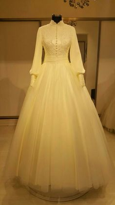 Beautiful gown / modest