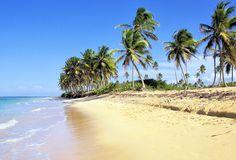 Wo den Alltag hinter sich lassen, wenn nicht in der Karibik: Der neun kilometerlange Strand Playa Bávaro in Punta Cana liegt im Osten der Dominikanischen Republik und ist gesäumt von hohen Kokospalmen.  Bei ganzjährig angenehmem Klima entspannen Sonnenanbeter tagsüber, abends laden die langen Buchten zu Spaziergängen ein.