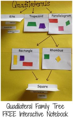 Free printables to create an interactive notebook for a quadrilateral family tree.