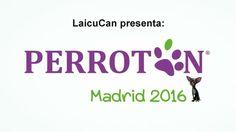Perrotón Madrid 2016